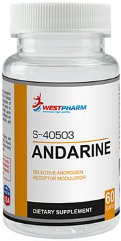 WESTPHARM - Andarine (S-40503) 25мг (60капс) - фото 6000