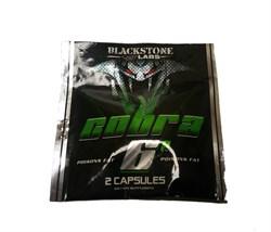 Blackstone Labs - Cobra 6P (1 порция) пробник - фото 8259