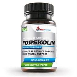 WESTPHARM Forskolin 250mg (60капс) - фото 8288