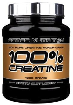 Scitec Nutrition 100% Creatine Pure (1000гр) - фото 8455