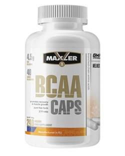Maxler BCAA (240капс) - фото 9151