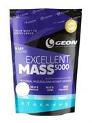 GEON Excellent MASS 5000 (2720гр)