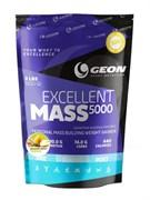 GEON Excellent MASS 5000 (920гр)