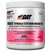 GAT Nitraflex (300гр)